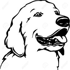 225x224 Best Outline Of Dog Images In Pencil Drawings, Animal