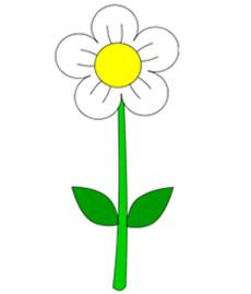 230x269 How To Draw Flowers Drawing Tutorials Drawing How To Draw