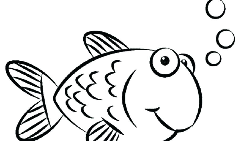1024x600 draw a goldfish draw a goldfish step