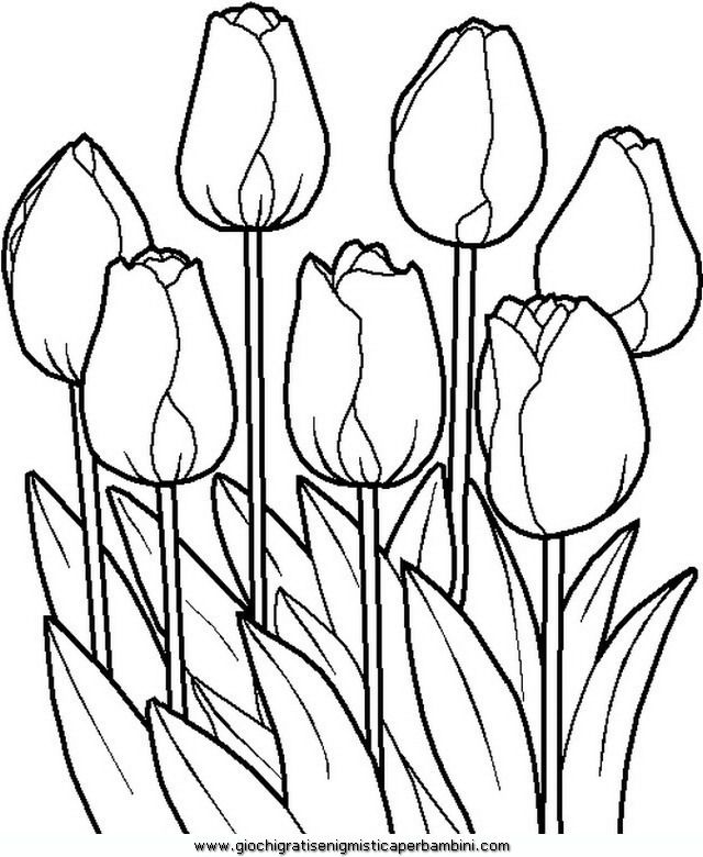 640x780 Spring Spring Coloring Pages For Adults And Teenagers
