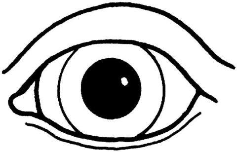 480x308 Googly Eyes Coloring