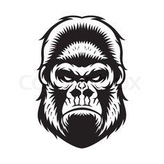 Gorilla Head Drawing