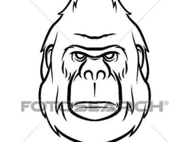640x480 Gorilla Clipart Line