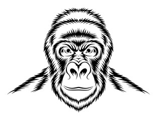 312x240 Gorilla Stock Photos And Royalty Free Images, Vectors