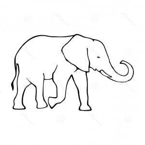 300x300 Stock Illustration Elephant Outline Drawing Graphic Design Image