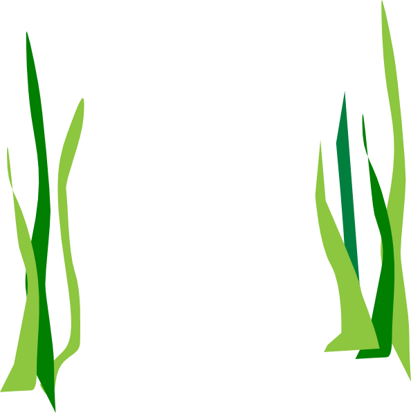 594x597 clipart grass grass field, clipart grass grass field transparent