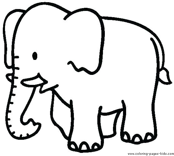 556x500 color pages of animals animals coloring pages animals coloring