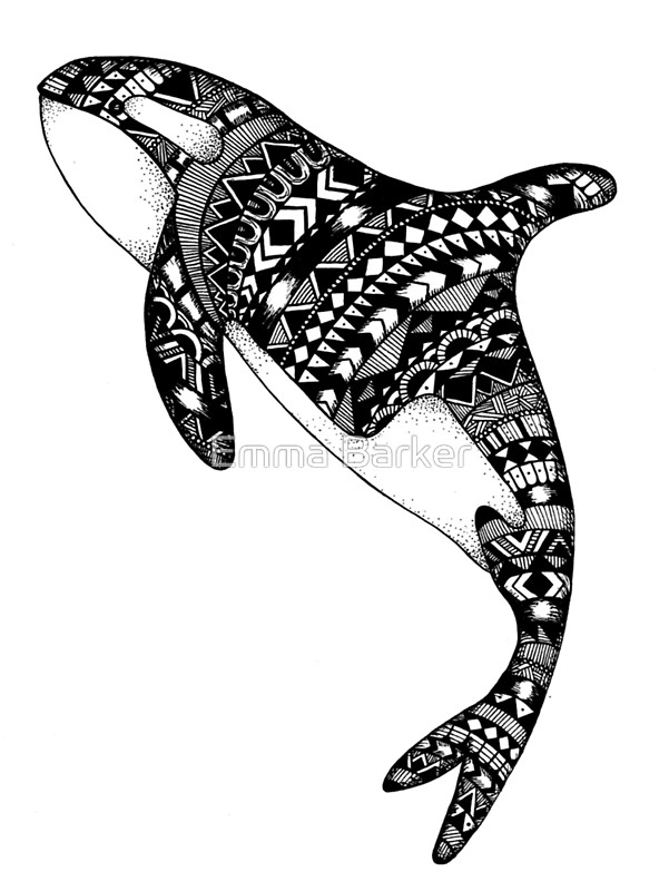 Gray Whale Drawing