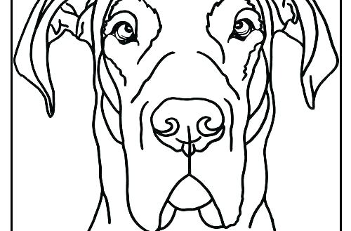 Great Dane Drawing | Free download on ClipArtMag