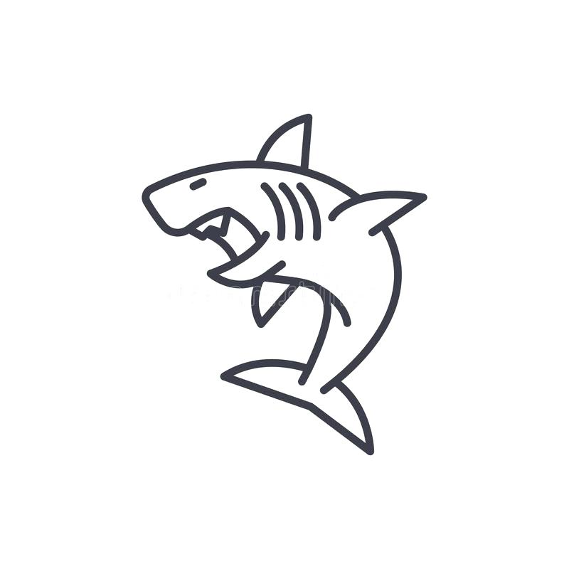 Great White Shark Outline Drawing | Free download on ...