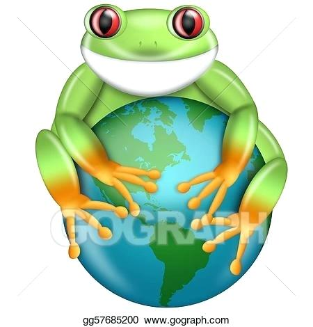 450x470 red eyed tree frog drawing how to draw a red eyed tree frog red