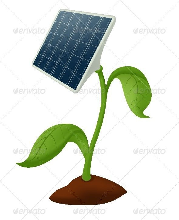 590x724 plant solar battery drawing in solar energy, energy