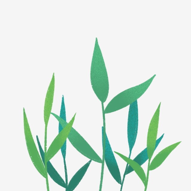 640x640 hand drawn nature green leaves, drawing, nature, hand drawn png