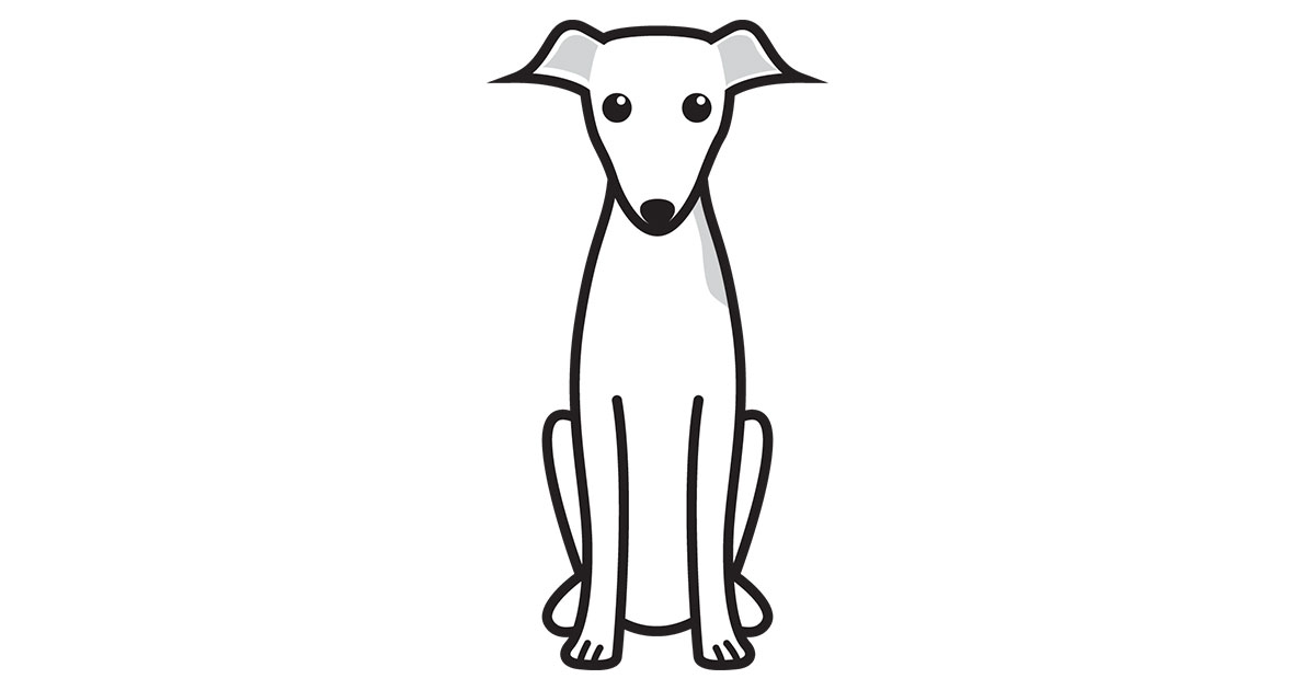 1200x630 Italian Greyhound
