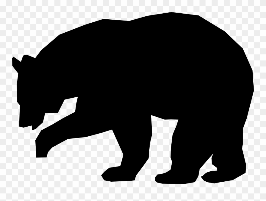880x665 american black bear polar bear grizzly bear drawing