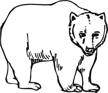 416x360 grizzly bear family grizzly bear grizzly bear clipart coloring