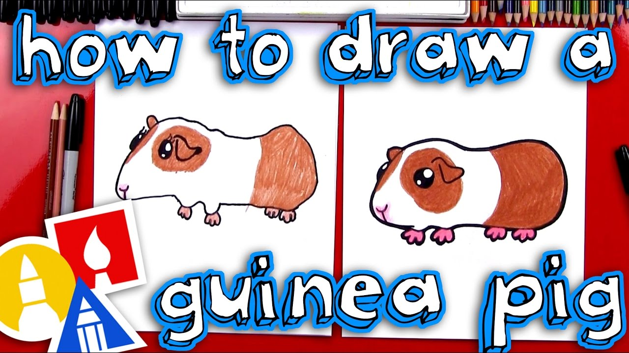 1280x720 How To Draw A Guinea Pig