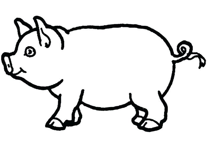 700x500 baby pig drawing pig funny pigs drawings cute drawings flying pig
