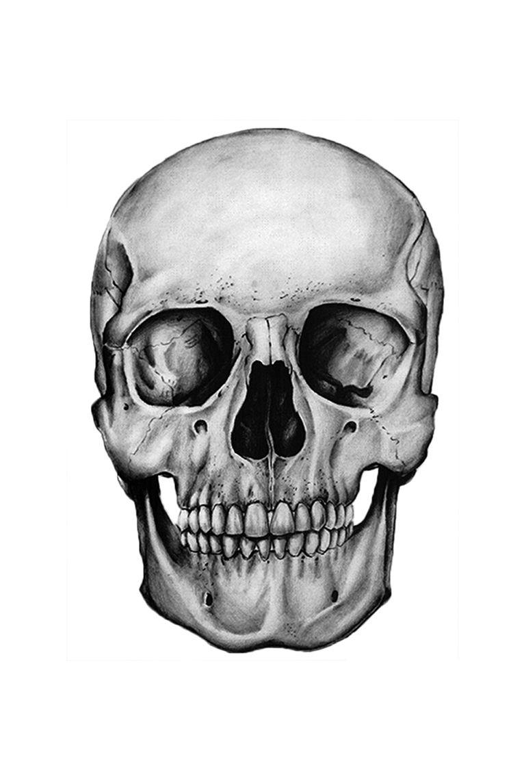 766x1125 human anatomy drawing anatomy drawings human anatomy drawing