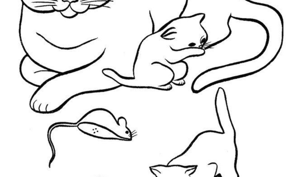 1024x600 drawing a cat face for halloween halloween cat coloring pages