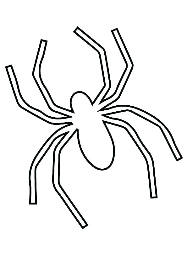 595x842 halloween spider coloring pages spider coloring pages spider