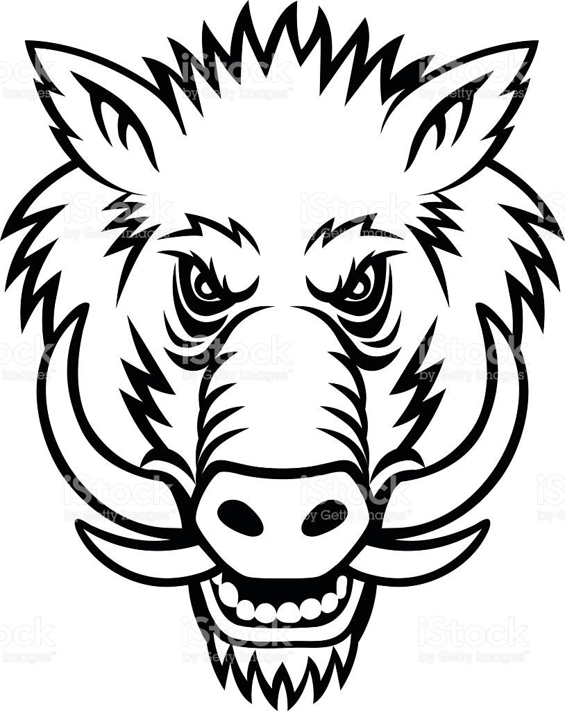 814x1024 A Warthog Coloring Pages Residence Halo Com In Addition