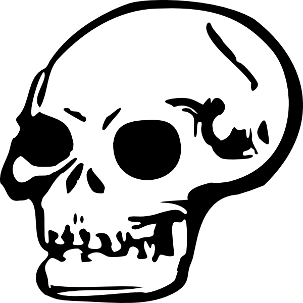 600x600 Drawing Skull Clipart, Explore Pictures