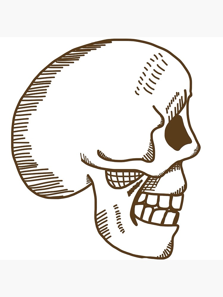 750x1000 Hamlet Skull In Brown Canvas Print