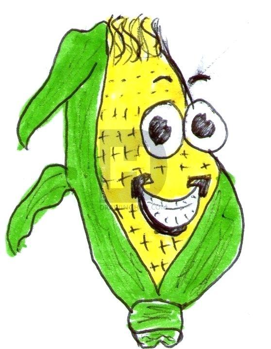 558x720 Corn On The Cob Drawing Corn Vegetable Hand Draw Corn Cartoon