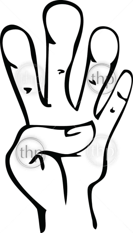 856x1500 Cartoon Vector Line Drawing Of Human Hand Showing Fingers Vector