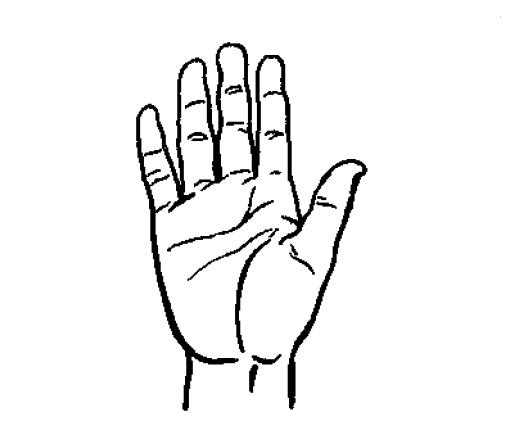 512x440 Filehand Drawing