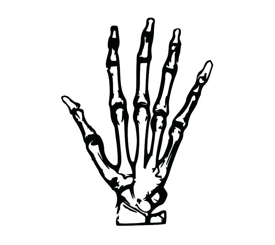 900x800 Simple Skeleton Drawing Draw Simple Human Skeleton Drawing