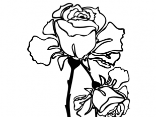 310x233 Hand Drawn Rose Vector Free Vectors Ui Download