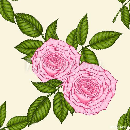 500x500 Rose Pattern