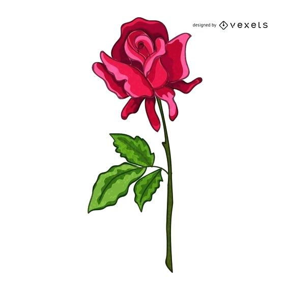 570x570 Drawn Rose Realistic Hand Drawing Roses Pencil Drawn Rose Images