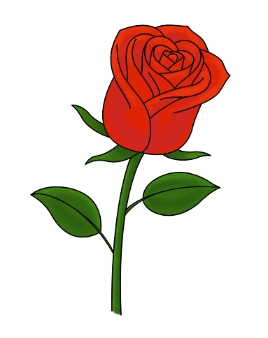 Hand Holding A Rose Drawing