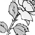 150x150 Handprint Drawing Wikiprestashop