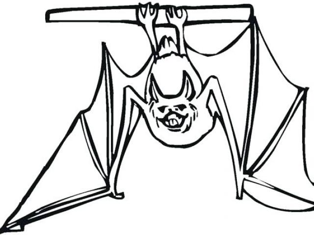 640x480 Drawn Bat Hanging Bat