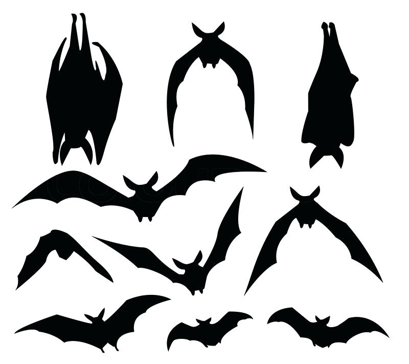 800x711 Hanging Bat Silhouette Illustration Of Bats Upside Down Legionfront