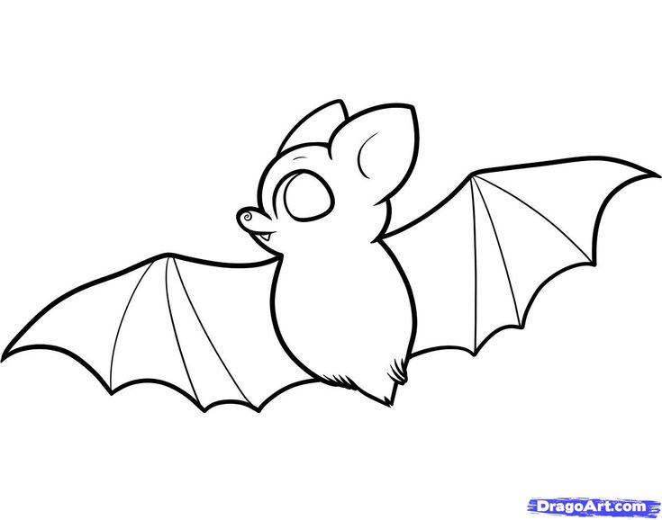 735x578 How To Draw A Bat For Kids Doodles Draw A Bat, Bats For Kids