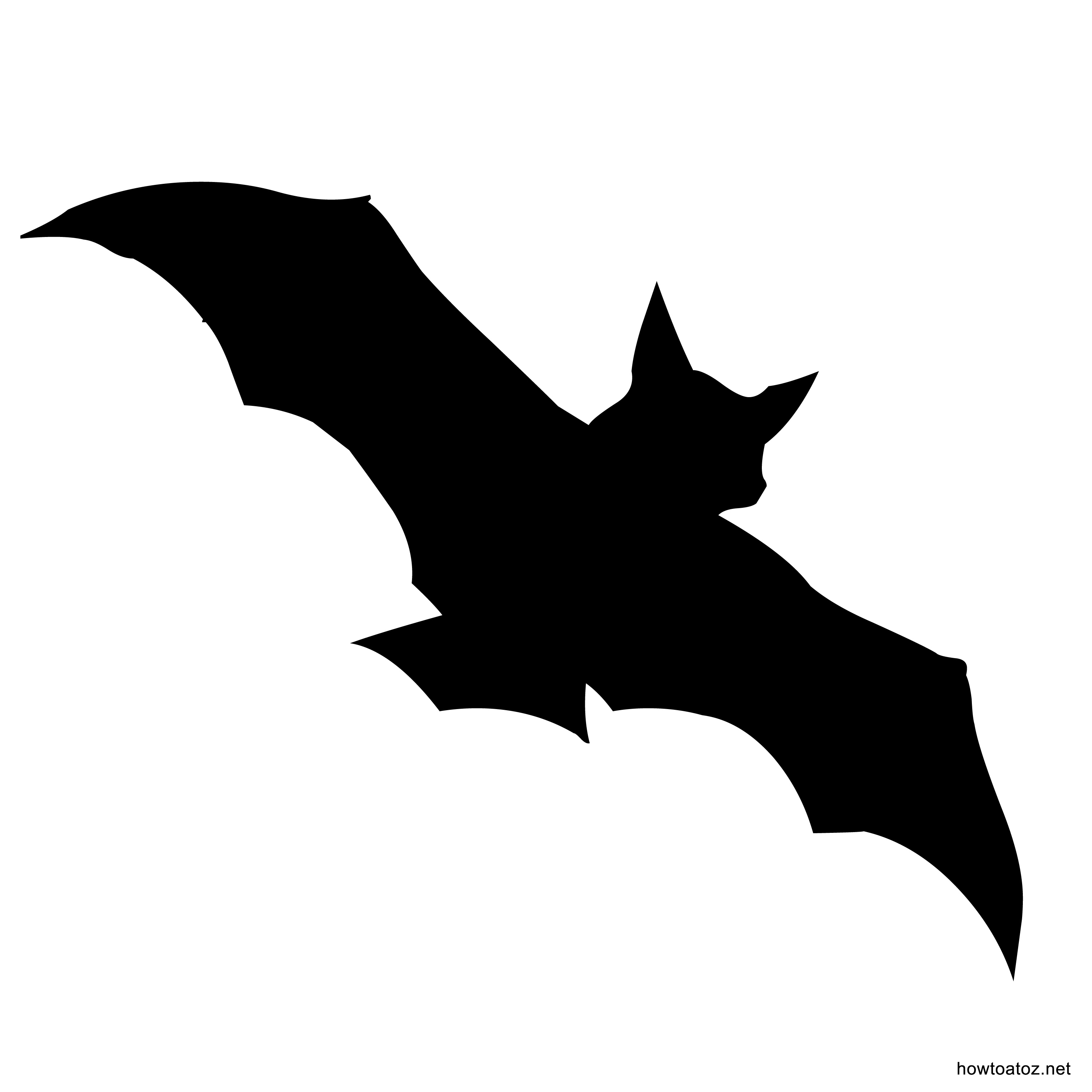 3000x3000 Bat Drawing Templates Fun For Christmas Halloween
