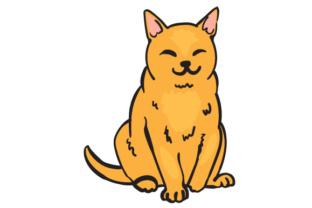 312x208 Cats