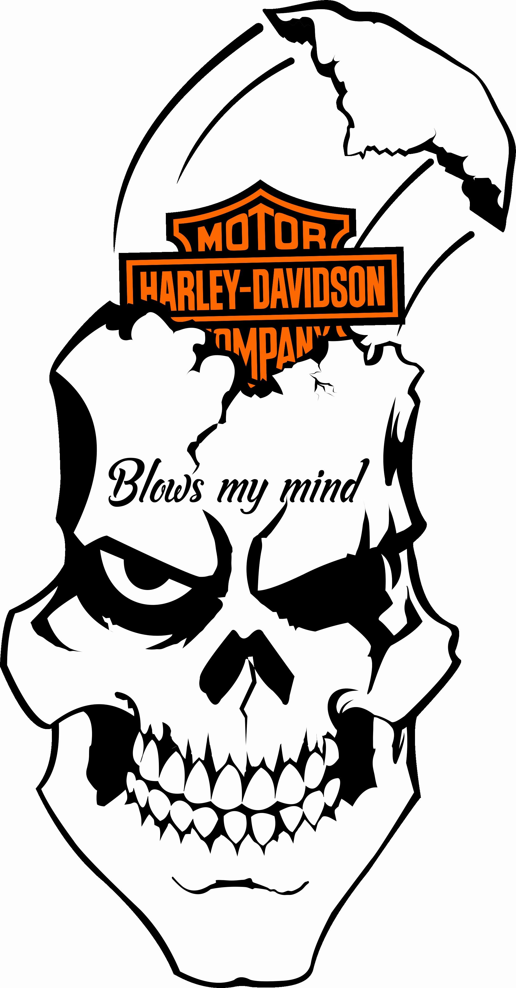 2069x3957 logo harley davidson vector new best harley davidson logo vector