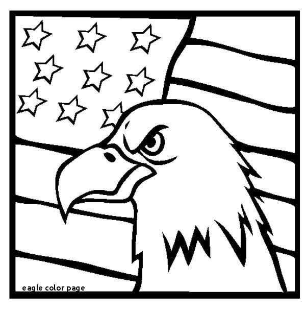 600x613 bald eagle drawing unique bald eagle coloring