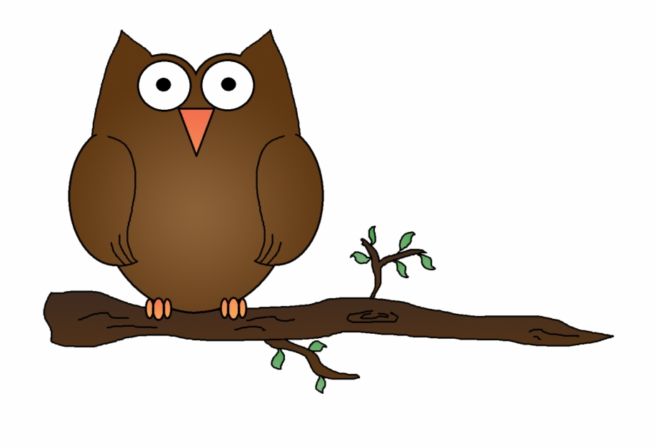 920x628 Hd Gallery For Owl On Branch Clipart