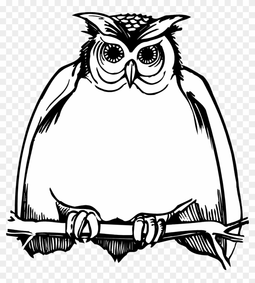 840x934 Harry Potter Owl Clipart Images In Collection