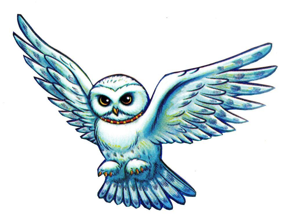 1000x762 Harry Potter Owl Headwig Wall Sticker Glossy Cut Out Border