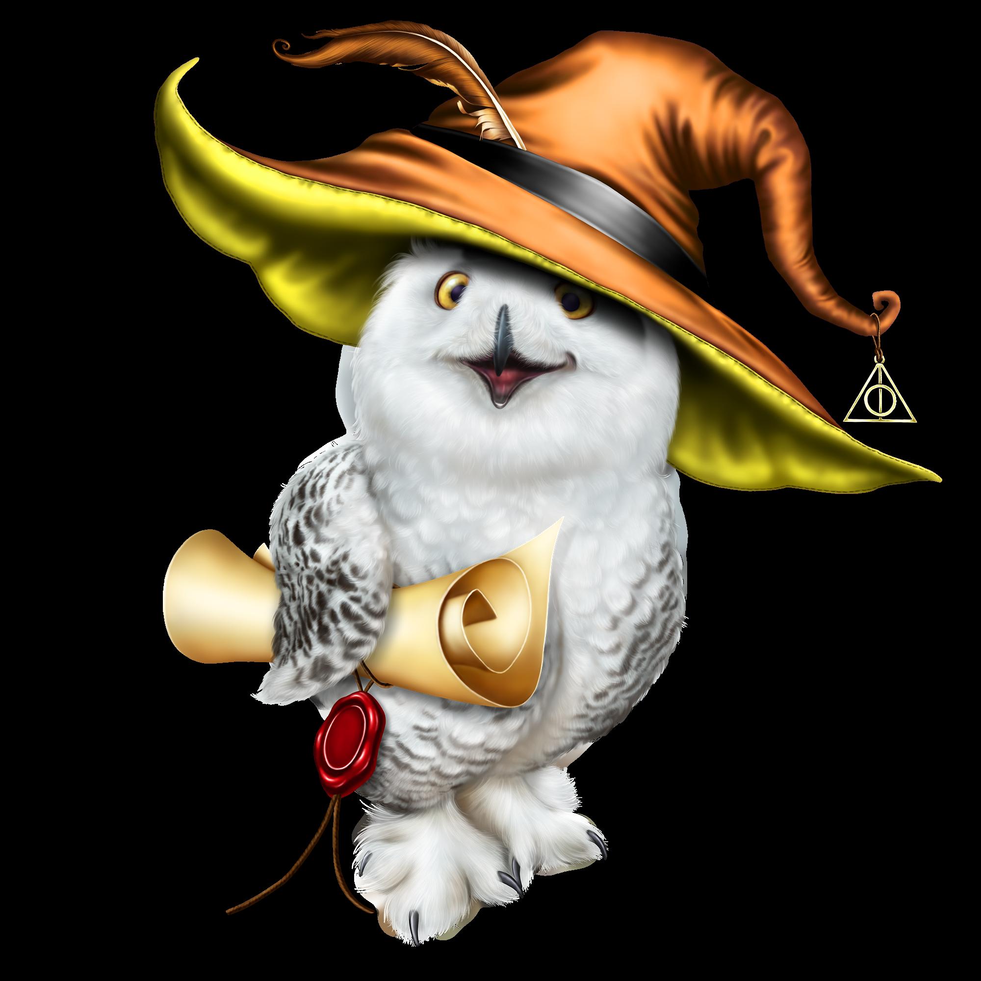 Cartoon Harry Potter Owl Png