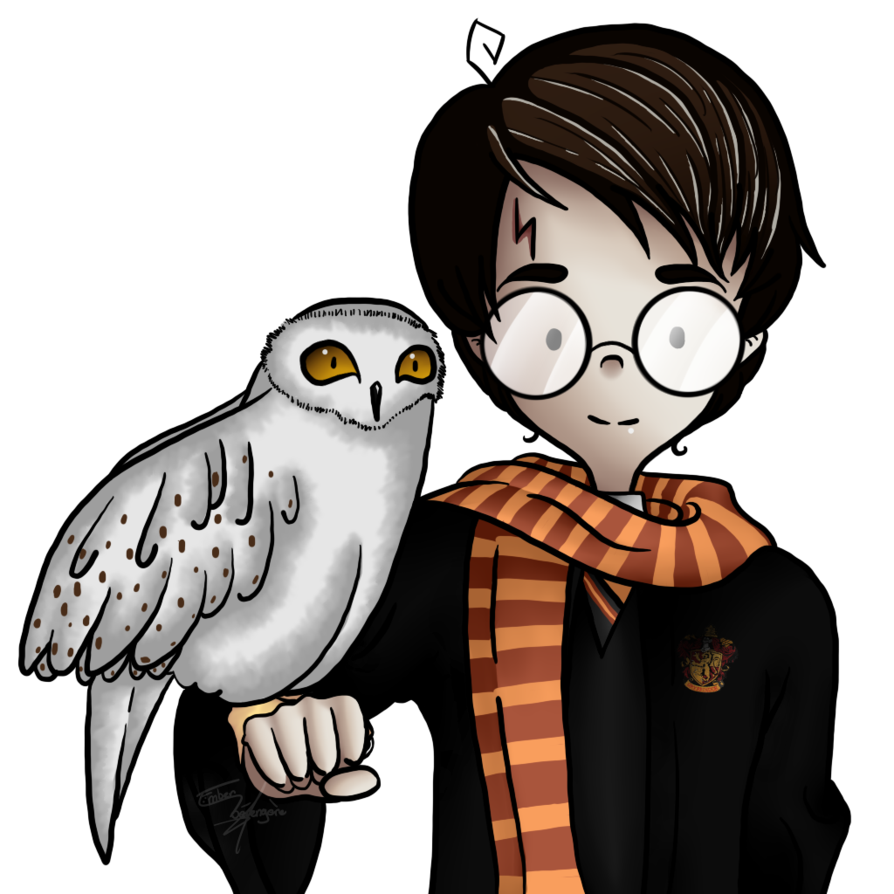 894x894 Collection Of Free Hedwig Drawing Creature Magical Harry Potter