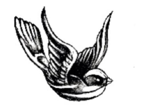 500x373 Harry's Bird Tattoo Shared